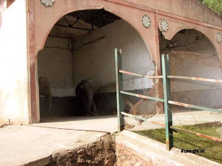2008 Elephant compound