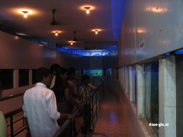 2008 Interieur aquarium Chennai / Vandalur