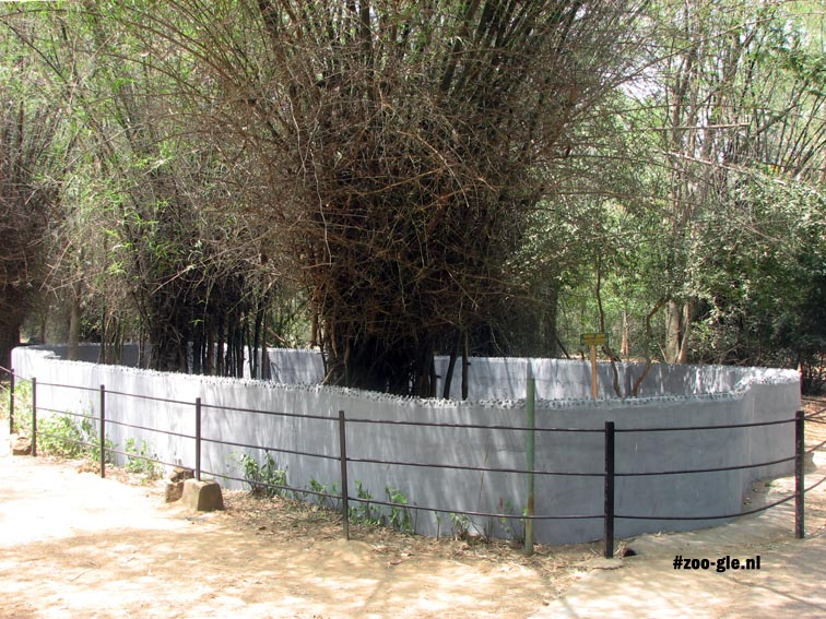 2008 Typically outdoor enclosure for snakes in India