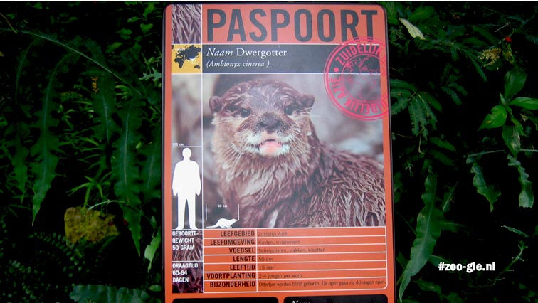 2005 Passport on the information panel, a world expedition in Emmen