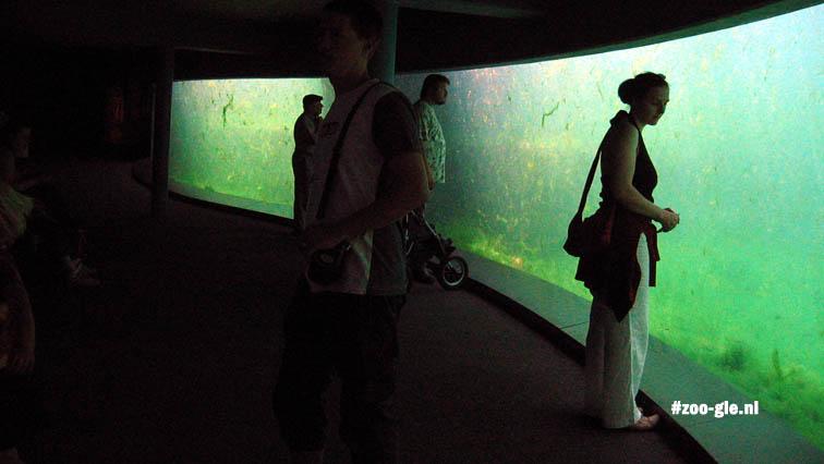 2006 Aquarama