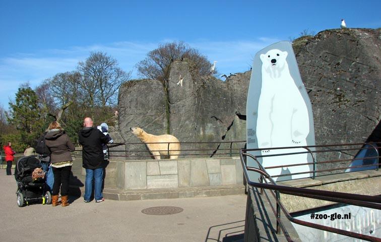 2009 IJsberenverblijf in Kopenhagen