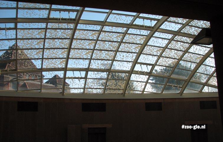 2009 De glazen koepels zijn bedekt met allemaal verschillende nepbladeren
