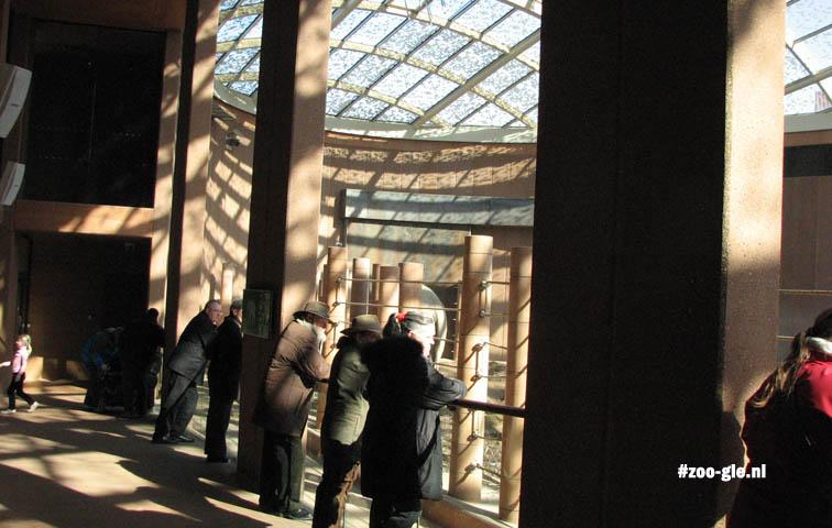 2009 Binnen 1360 m² olifantenruimte en 2300 m² voor bezoekers