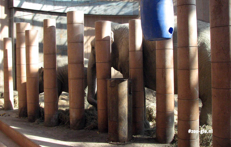2009 Zookeepers can slip through between the poles