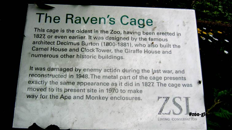 2019 Raven's cage 1827 by Burton the designer of the zoo