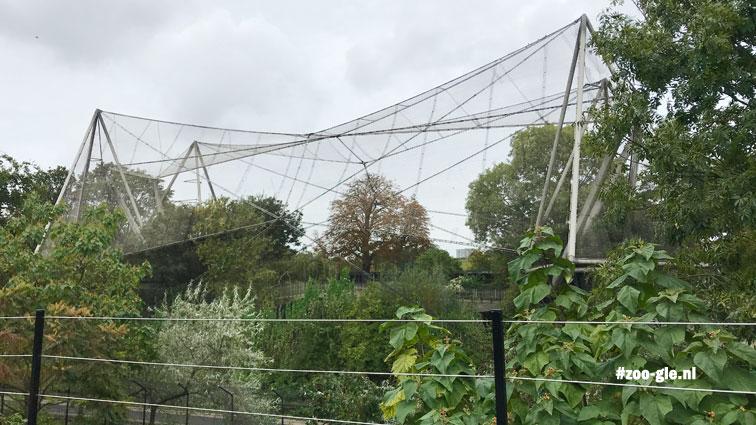 2019 Snowdon Aviary
