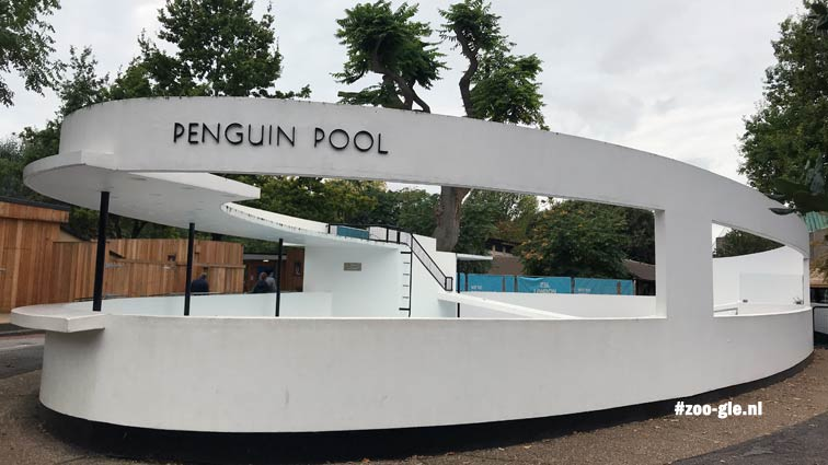 2019 Lubetkin-Tecton Penguin Pool 1934