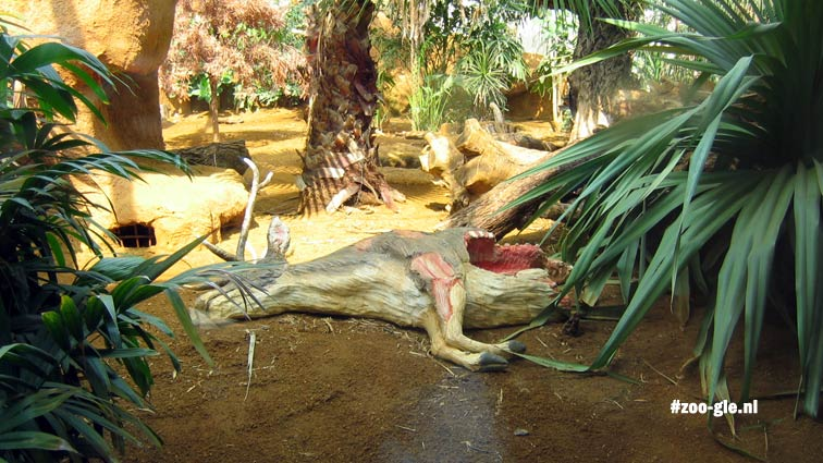 2005 Bij de komodovaranen houden ze je voor de gek met een modelkarkas van een hert