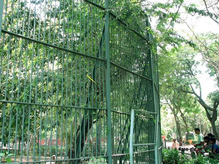 2008 Via de boom bij het hek kan een leeuw wegkomen
