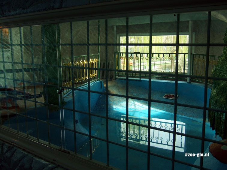 2009 Empty indoor pool