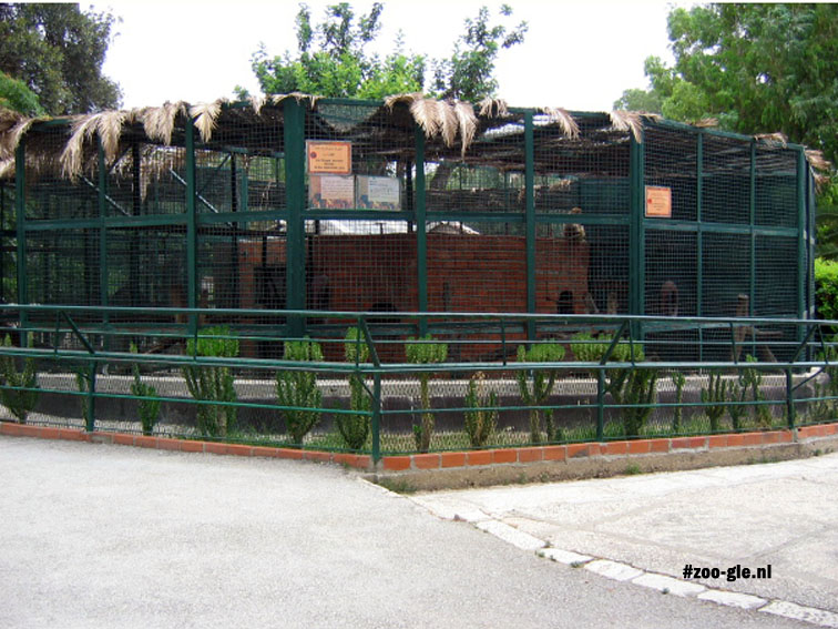 2005 Monkey enclosure