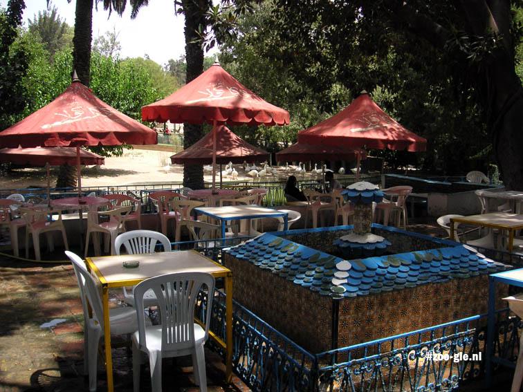 2005 Terras zoocafé