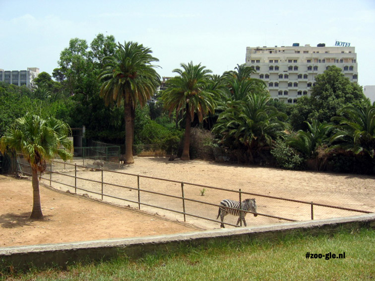 2005 Zoo in contact met de stad Tunis