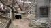 2007 Verblijf honingberen