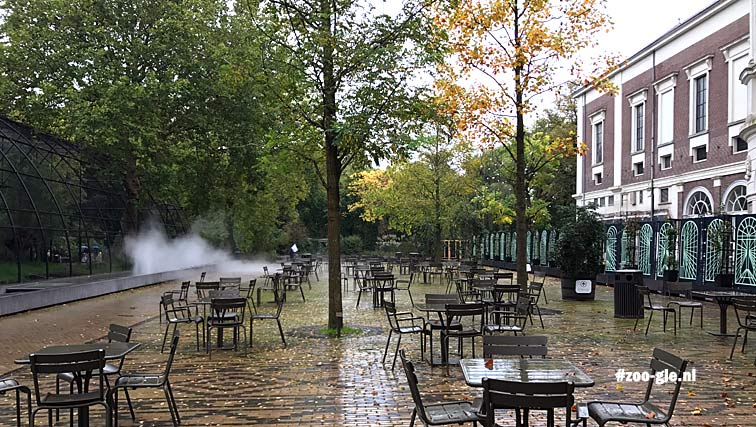 2018 The French style Artis Square a hidden gem in the city