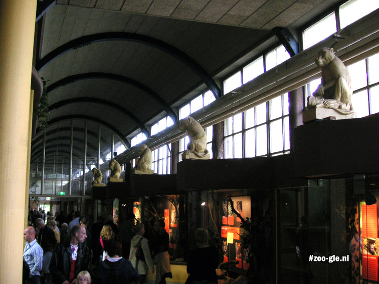 2005 Outdated monkey exhibits