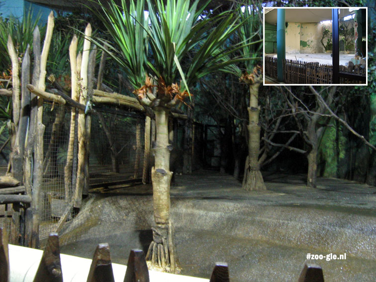 2006 Enclosure pygmy hippopotamus pimped with fake-trees