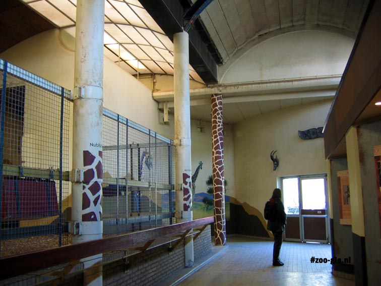 2005 Giraffe stable in the Rivièrahal