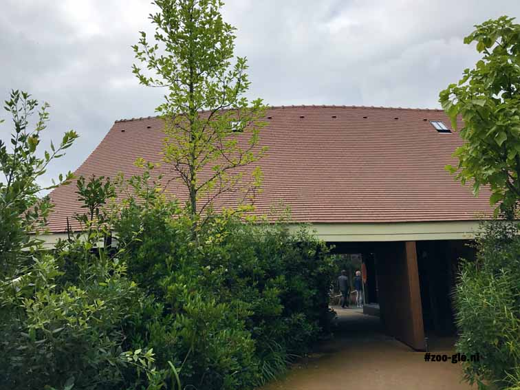 2017 Ceramic roof tiles on the renovated wooden kudu stable