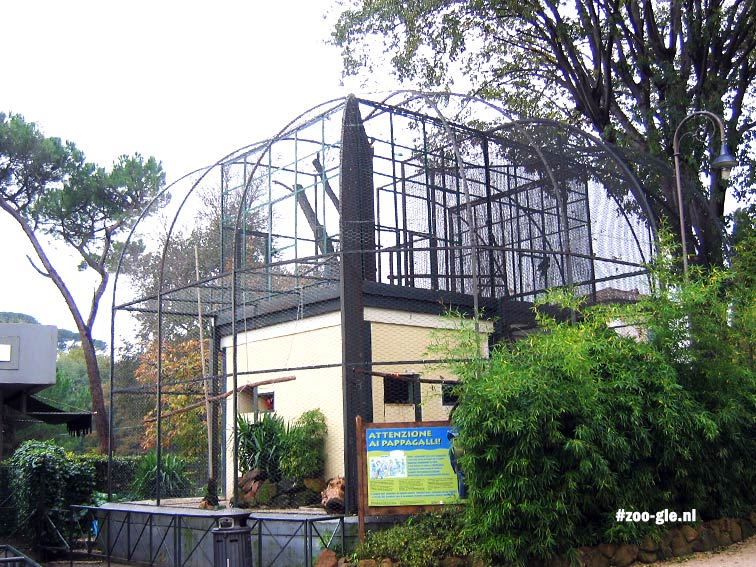 2005 Parrot cage around small structure