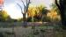 2005 Mooi licht op Hagenbecklandschap