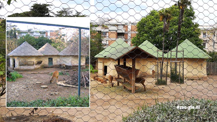 Ungulate enclosure 2005 and in 2019 with a feed trough in front
