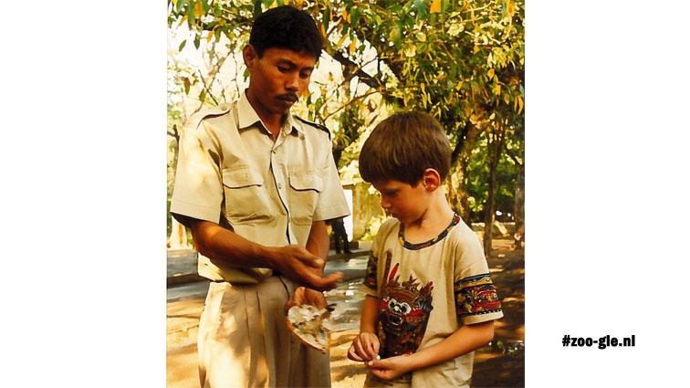 1996 Education under the kapok tree