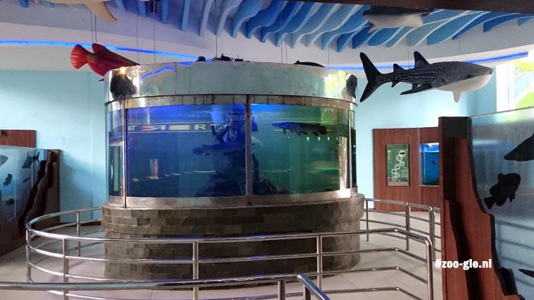 2017 Aquarium