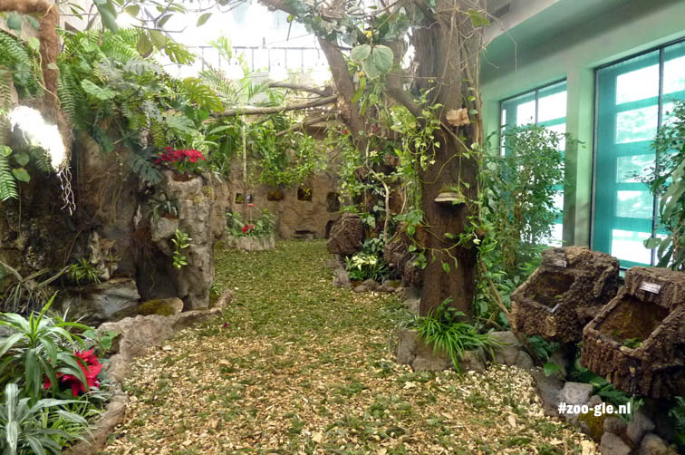 2016 Interieur insectarium zoo Warschau