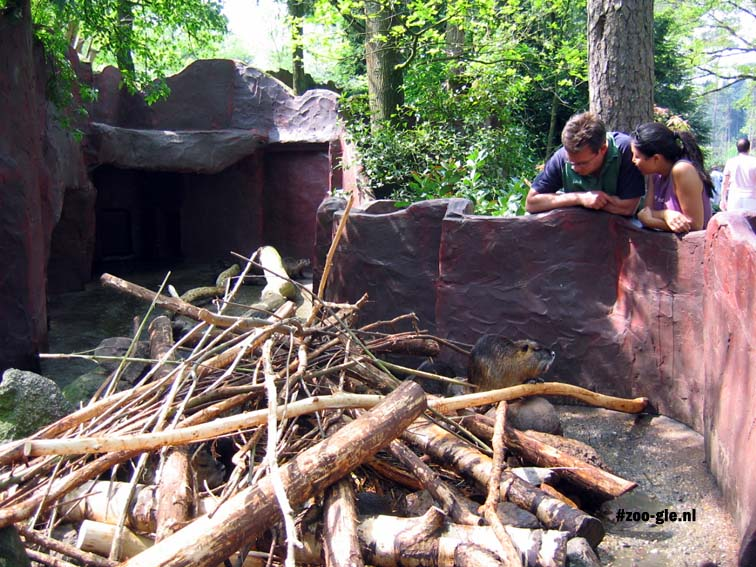 2005 An imaginatively themed environment