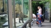 2005 Nature behind glass