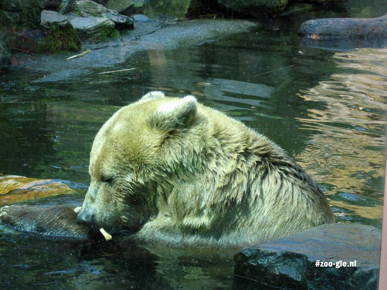 2005 Nature photography