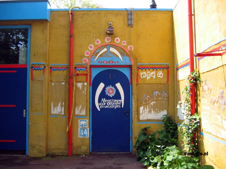 2005 Elephants and staff only
