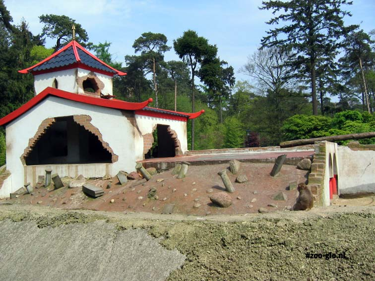 2005 Japanese garden under construction