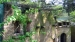 2005 Bald ibises in the Ancient City