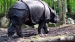 2005 Theme of protection