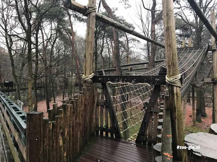 2017 Rope tunnels above the Bear Forest