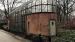 2017 Enclosure Hyacinth macaws