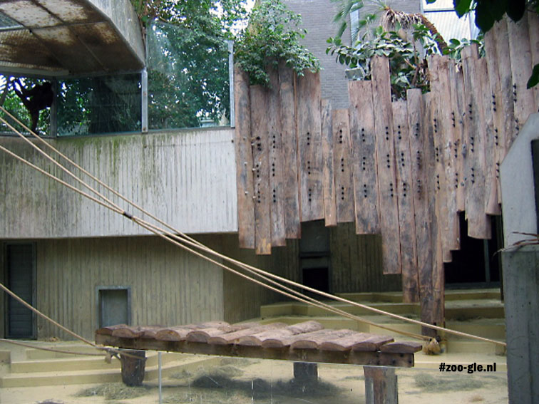 2005 Ape House, ropes, and electric fencing