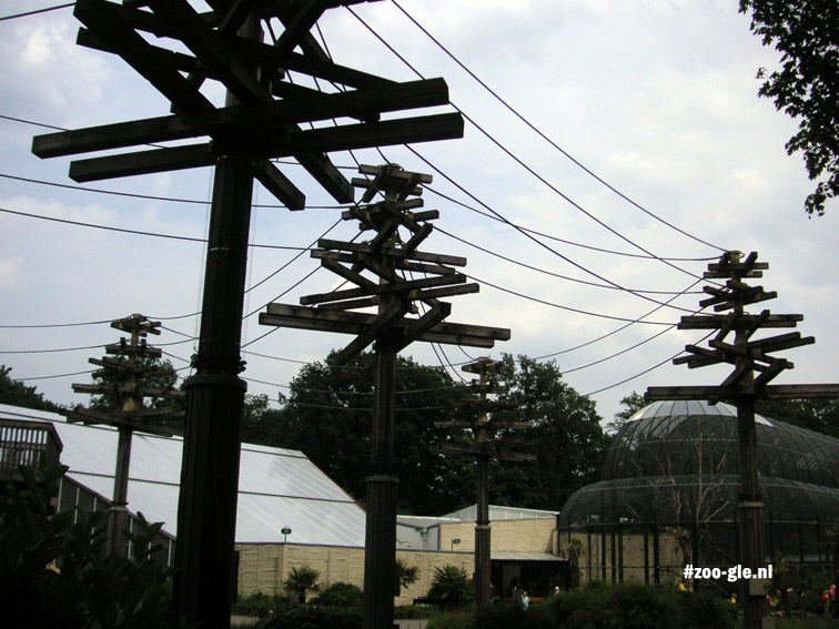 2005 Fake trees with lianas, a system of poles and ropes
