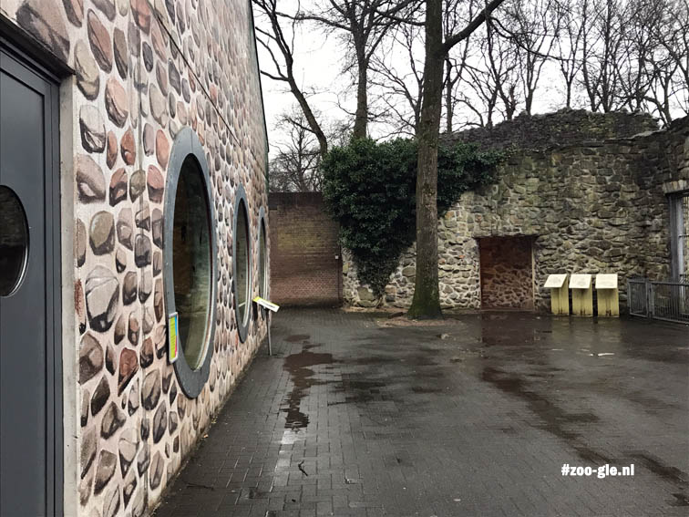 2017 Eén muur heeft echte stenen en één niet