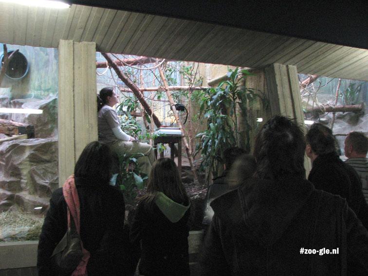 2008 Verzorger zoo Antwerpen