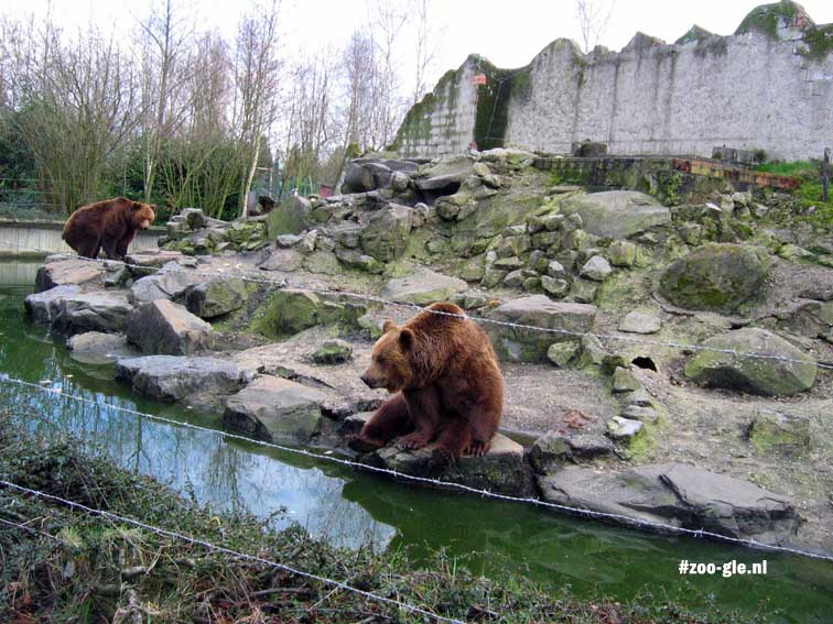 2007 A ditch, barbed wire and bears