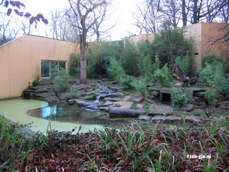 2007 Tiger enclosure
