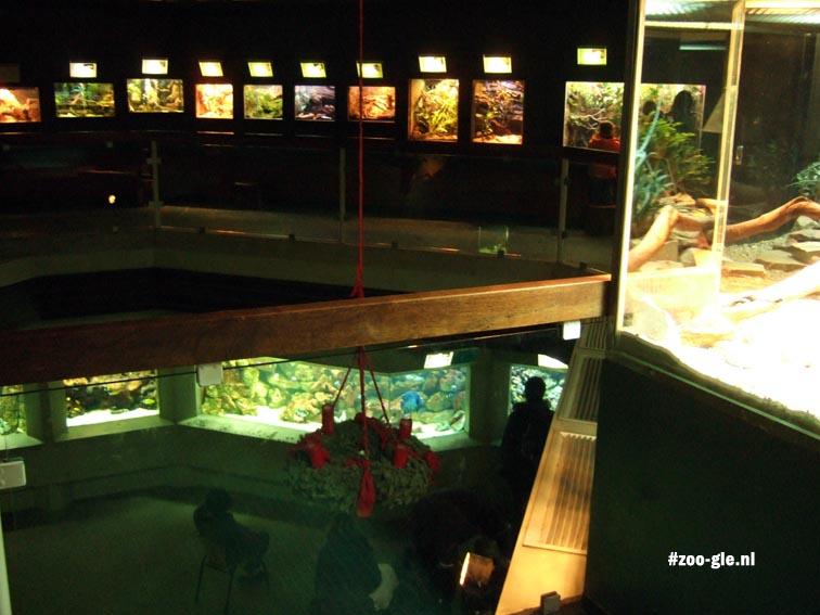 2007 Aquarium van twee verdiepingen