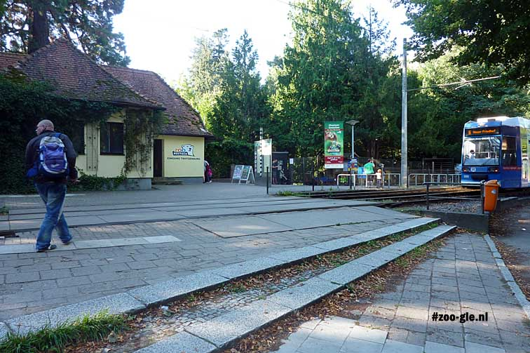 September 2013 Main entrance zoo Rostock and giant sequoia