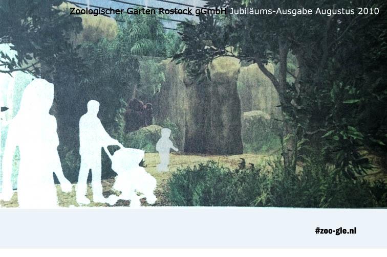 Vanaf 2012 oog in oog met orang-oetans in het Darwineum