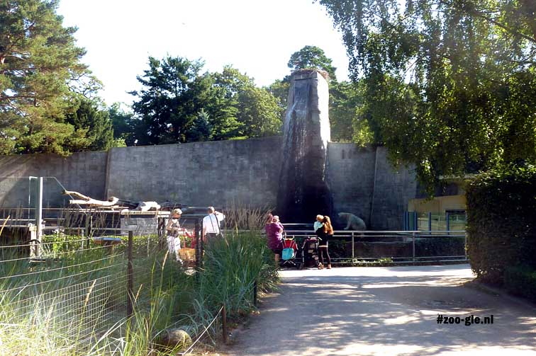 2013 Polar bear enclosure