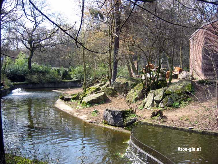 2006 Leeuwenterras
